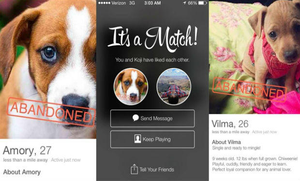 Social Tees Animal Rescue Puppy Love on Tinder