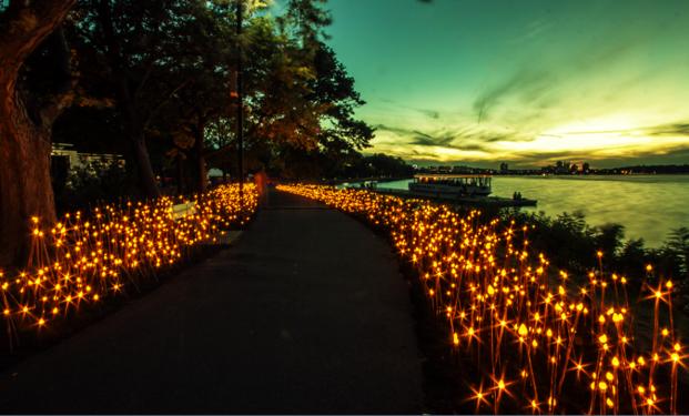 Un bosque de luces en Boston